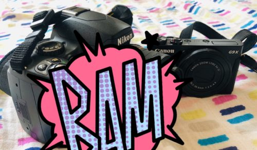 キヤノンとニコンのカメラ